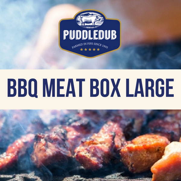 BBQ meat box Large