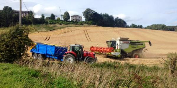 Combines in action at Clentrie Farm