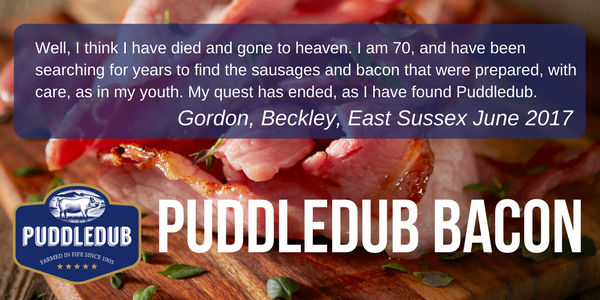 What do our Puddledub customers say about us?