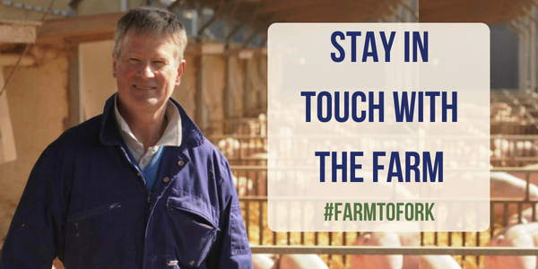 Sign up for farm updates